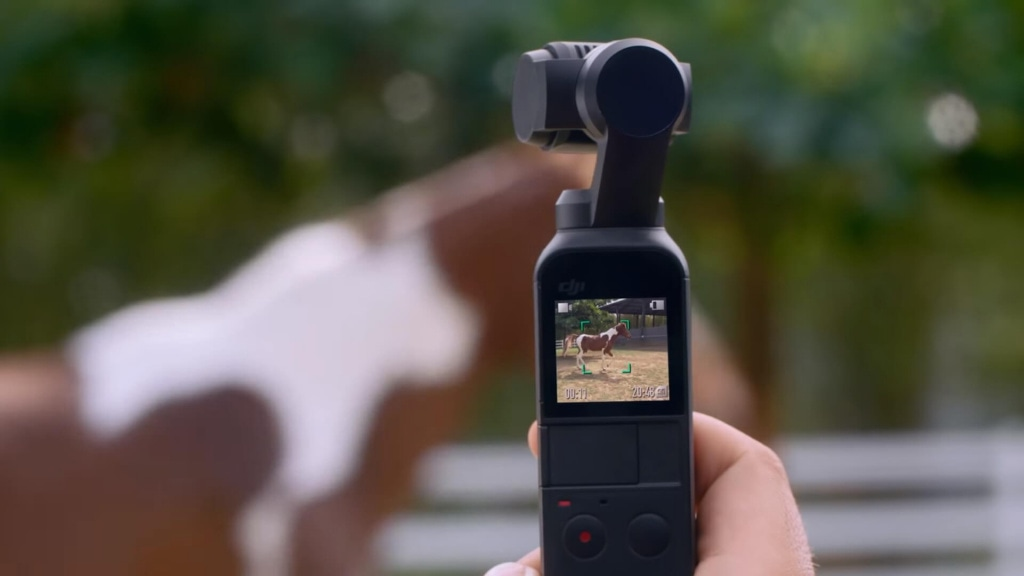 DJI Osmo Pocket - ручная карманная камера